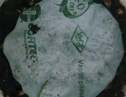 New Eco-Friendly Films from Cortec® Corporation: Laboratory Compost Disintegration Studies