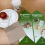 FEATURED IN: Cortec puts own compostable bags to use in new organics recycling program Featured in Observatorio Plastico Magazine!